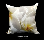 CHARLENE Toss Pillow